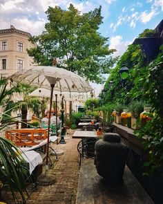 Kurzurlaub am Mittelmeer im 🌴🌊 Restaurants In Paris, Disneyland Paris, Indoor Garden, Indoor Plants, Hydroponic Plants, Plant Growth, Vienna Austria, Adventure Awaits, Where To Go