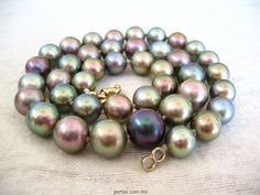 Sea Of Cortez Pearls