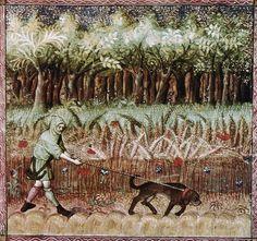 Gaston Phoebus - Livre de la Chasse