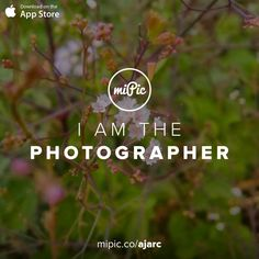Check out my #miPic gallery and own my pics as awesome products! via @mipic_app Mobile Photography, Cool Art, Presentation, App, Gallery, Awesome, Check, Artist, Pictures