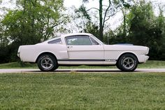 1966 Ford Mustang Shelby GT350H Maintenance/restoration of old/vintage vehicles: the material for new cogs/casters/gears/pads could be cast polyamide which I (Cast polyamide) can produce. My contact: tatjana.alic@windowslive.com