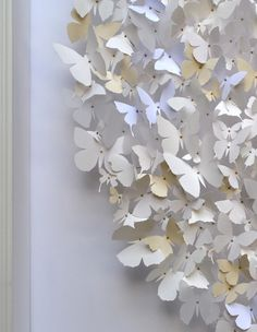 butterfly clusters    Rebecca J Coles