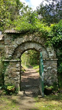 Enys Garden, Penryn, Cornwall. Photo by Fiona Campbell-Howes