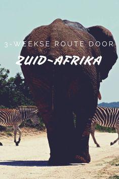 Route voor een rondreis van 3 weken door Zuid-Afrika - Worldwife.nl #zuidafrika