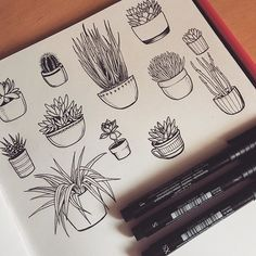 Doodling succulents and plants - slept until midday and kept getting distracted…