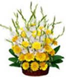 Yellow Gerbera & Glads Basket for Hyderabad delivery. Pick fresh and variety flowers from best local florists in Hyderabad.  Visit our site : www.flowersgiftshyderabad.com