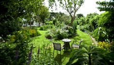 ​This cottage has been named the Best Beach Holiday Home in Europe Irish Cottage, Old Cottage, Cottage Gardens, European Holidays, Luxury Holidays, Garden Landscape Design, Garden Landscaping, Fishermans Cottage, Luxury Holiday Cottages