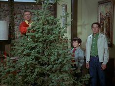 Brady Bunch Christmas Christmas Tv Shows, Great Christmas Movies, Holiday Movie, Christmas Past, Christmas Music, Christmas Pictures, Vintage Christmas, Xmas, Christmas Tv Specials