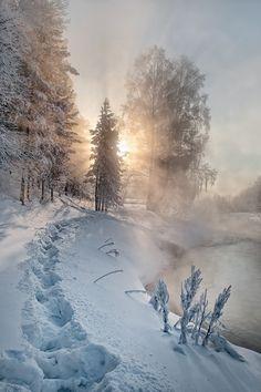 Una nebbia impenetrabile, tipica della stagione invernale, si abbatte sulla città, raggelandosi poi sui profili di ogni cosa. [Mary Chioatto]