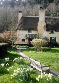 Daffodil cottage | Selworthy, UK | By: Rebel Shooter1 | Flickr - Photo Sharing!