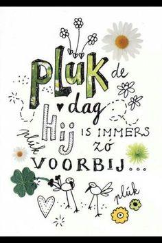 Bekijk de foto van PuckDupont met als titel Pluk de dag  Hij is immers zo voorbij en andere inspirerende plaatjes op Welke.nl.