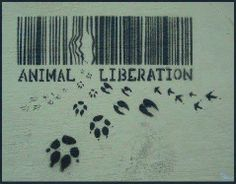 Animal Liberation.... Only humans are capable of emancipation for the billions of souls that other humans keep and mistreat like they're mere objects.