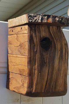 Maple face bird house.