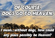 Dogs go to heaven quote | Dogs: Our Best Friends | Pinterest