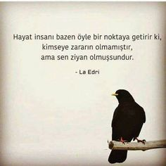 Hep zarar hep ziyan.. Ne olacak halimiz böyle... Cool Words, Wise Words, Harsh Words, I Hate People, Famous Words, Meaningful Words, Karma, Favorite Quotes, Quotations