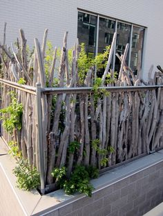 On the High Line: The Lull Before the Storm