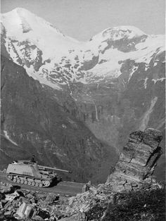 German SdKfz 164 Nashorn tank destroyer in the Alps, Luftwaffe, Mg34, Ww2 Photos, Ww2 Pictures, Military Armor, Tank Destroyer, Ww2 Tanks, World Of Tanks, German Army