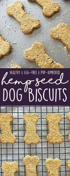 Promote joint health and skin/coat health by making these healthy, grain-free hemp seed dog biscuits for your pups! (Healthy Dog Treat Recipe)