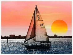 """awesome photo by Athala Carole Bruckner called """"Sail Away with Me"""""""