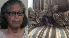 Illinois grandmother puts down children's 4 kittens with ham... - Care2 News Network