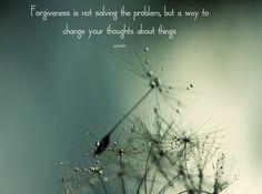 relations, troubles,yentle, forgiveness, nature image, natuur, green image, groen, vergeving, relaties, ruzies