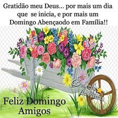 Bom Dia Meus Amigos Feliz E Abencoado Domingo Cheio Das Maravilhas