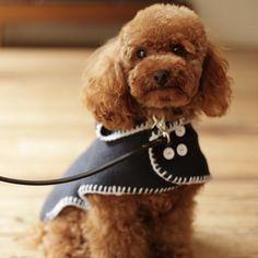 犬の服はドッググッズ通販/販売のfree stitch dog coat