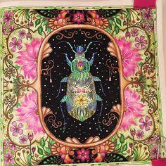 Adult Coloring, Coloring Books, Coloring Pages, Secret Garden Coloring Book, Johanna Basford Coloring Book, Color Pencil Art, Prismacolor, Colored Pencils, Butterfly