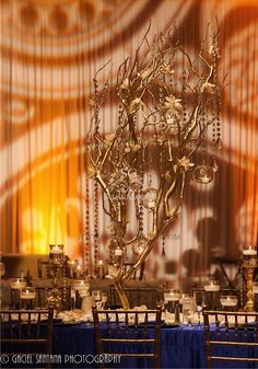 Tall Manzanita Branches, Hanging Glass Globes, Amber Lighting, Sapphire Linen, Suhaag Garden, Indian Wedding Decorator, Lots of Candles, Cymbidium Orchids