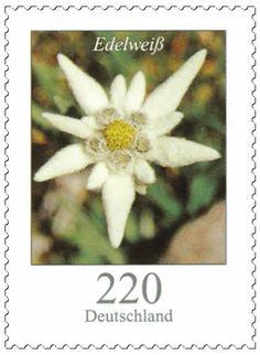 Serieblumen michel2530 edelweiss.jpg