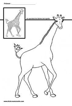 Site maternelle GS et MS : les taches de la girafe #science #science #dessin Farm Coloring Pages, Preschool Coloring Pages, African Crafts, African Art, Drawing For Kids, Art For Kids, Zoo Preschool, Safari, Animal Activities For Kids