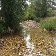 Creek at Trapper Lodge WY