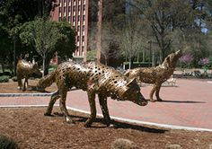 """Metal Wolves,welded metal art,at """"Wolf Plaza"""" near the campus book store on N.C.State University,in Raleigh,N.C./Wolves placed at """"Wolf Plaza"""" near the campus bookstore after being welded by a metal artist in his shop/studio.Love the artistic metal welded wolves(metal welded art is one of my favorite types of art)and although they were not created on site,but in a shop then moved to """"Wolf Plaza"""" near the campus book store at N.C. State. N.C. State is a big University in a big town, have been…"""