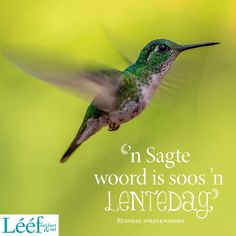 Goeie More, Hart, Afrikaans, Quotes, Quotations, Quote, Shut Up Quotes
