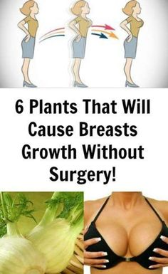 Numerous women would like to have Breasts Growth but are uncomfortable with the idea of undergoing cosmetic surgery. Fortunately, there are some options that could help to increase breast size naturally, with no implants required. Mother nature has provid