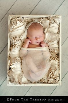 Adorable!!  From the Treetop photography nailed the sweetness in this shot and infused a modern twist without destroying the simplicity!  Just FABULOUS!