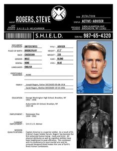 S.H.I.E.L.D. profile: Steve Rogers.  If this is true, it has answered one of my biggest questions:  What did he do for a living before the war???
