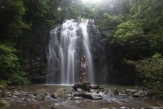 Every trip to Queensland should include waterfalls and the Atherton Tablelands is home to some of the world's most impressive. Atherton Tablelands, Cairns, Playground, Waterfall, Road Trip, Australia, Travel, Outdoor, Children Playground