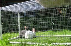 Rabbit hutch plans for a PVC hutch frame that can hold up to 6 all-wire rabbit cages. Hutch frame is almost indestructible, and cleaning is a breeze. Just cover and use