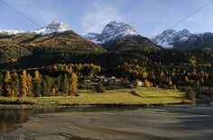 Inn River surrounded by autumn-coloured larch forests and mountains with fresh snow Scuol Lower Engadin Grisons Switzerland Europe