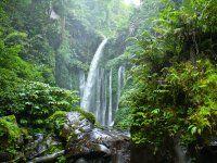 Waterfall Tiu Kelep Lombok