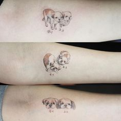 A photo of three people with memorial tattoos for their dogs by Sol Tattoo (IG—soltattoo). Mini Tattoos, Cool Tattoos, Memorial Tattoos, Tattoo Inspiration, Tattoo Designs, Tattoo Ideas, Instagram Posts, Tattoo Abstract, Sketch