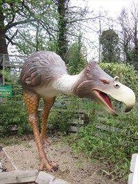 72 Best Dinosaurs Images In 2014 Dinosaur Park Jurassic