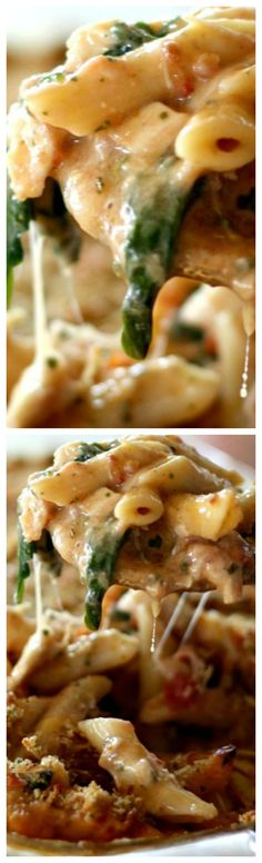 Baked Chicken Pesto Alfredo Freezer Meal ~ Made with chicken, basil pesto, bacon, cheese, spinach and tomatoes mixed together in a delicious white sauce... So good!!