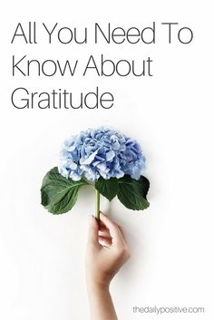 Gratitude doesn't always come naturally — that's why we must choose and practice gratitude. Of course, we want to positively impact others with a gracious attitude, but you may be asking yourself, how does gratitude influence our personal lives?