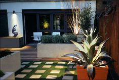 A low maintenance, South facing roof garden situated over a car park. | designed by Amir Schlezinger
