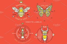 Thin line insect labels by karnoff on @creativemarket