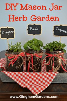 by Gingham Gardens and learn how to make an Easy DIY Mason Jar Herb Garden. by Gingham Gardens and learn how to make an Easy DIY Mason Jar Herb Garden. 4 Ways To Transform Terra Cotta Pots Custom Printed Kraft Herb & Spice Jar Canning Labels Mason Jar Herbs, Mason Jar Herb Garden, Mason Jar Diy, Herb Garden Design, Diy Herb Garden, Garden Ideas, Easy Garden, Herbs Garden, Garden Types