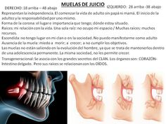 Muelas del juicio. Fuente Odontología transgeneracional.