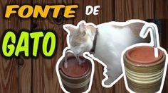 DIY: Como fazer um bebedouro para gatos com fonte ✤ Ajuda o gato beber m...